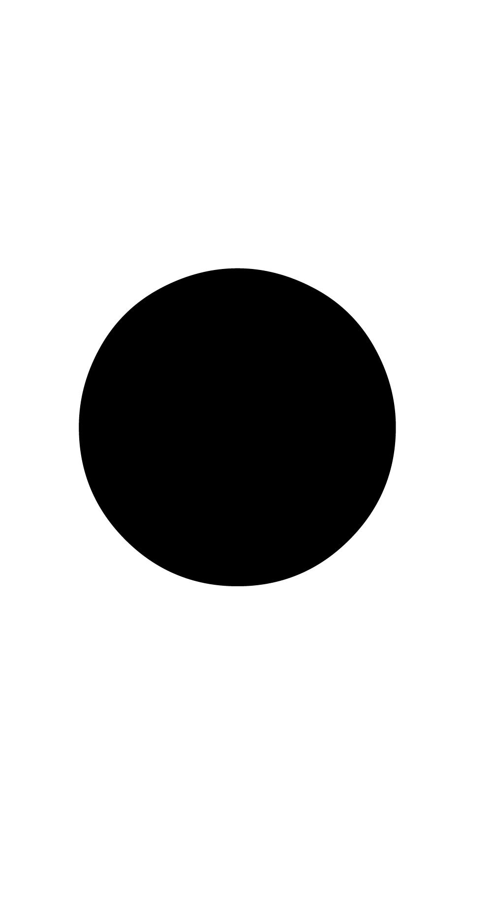 [MISSING IMAGE: icon-bullet.jpg]