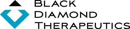 [MISSING IMAGE: lg_blackdiamond-4c.jpg]