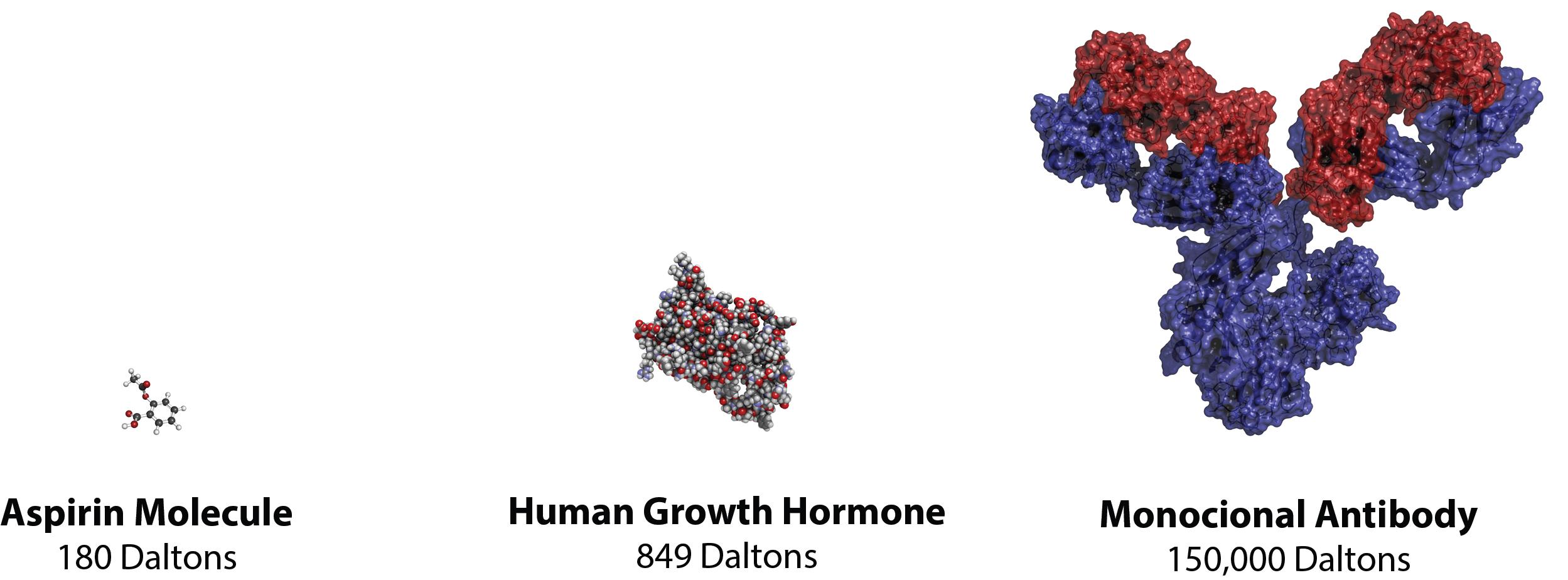 [MISSING IMAGE: t1602975_molecule.jpg]