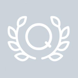 https://cdn.kscope.io/7c959b85fd025150ba69e2aa1b0e330a-icons-qualityxalt041.jpg